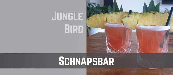 TTC-Schnapsbar-Jungle Bird Cocktail